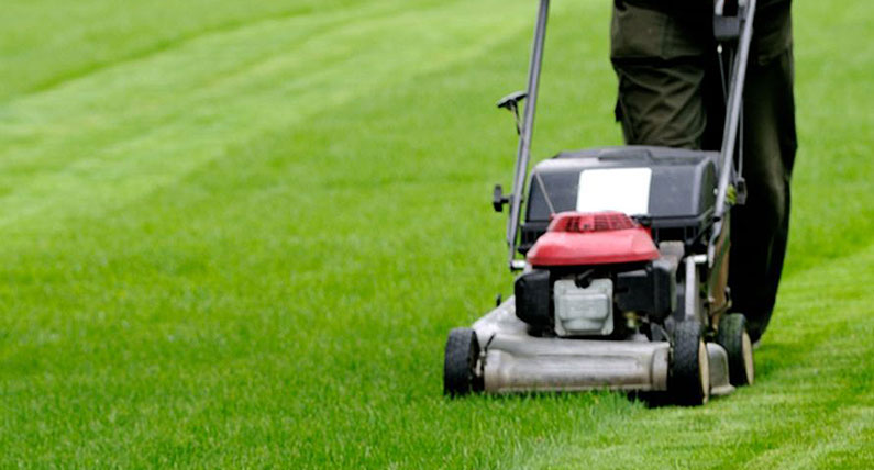 grounds-maintenance-northamptonshire